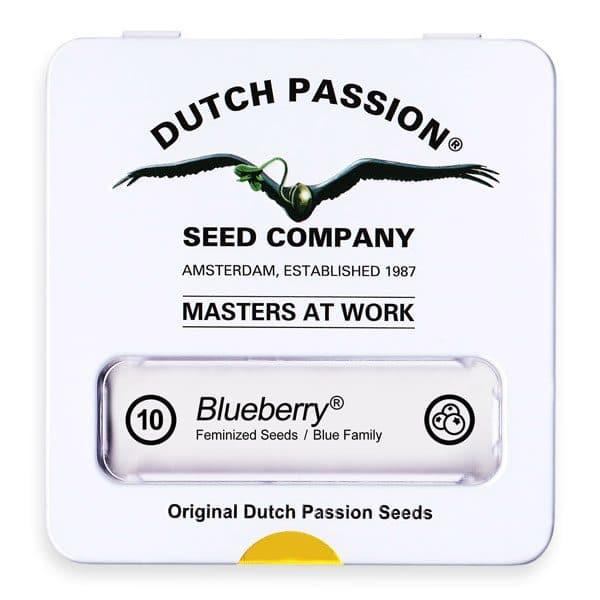 Cannabisfrø Blueberry Dutch Passion 10