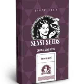 Cannabisfrø Sensi Seeds Northern Lights