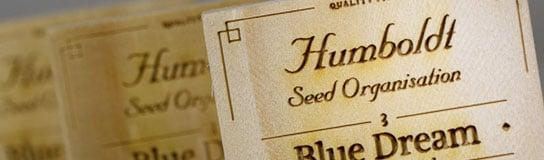 Promotion på cannabisfrø fra Humboldt Seed Organization