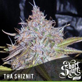 Auto Cannabisfrø Tha Shiznit