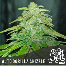 Cannabisfrø Auto Gorilla Shizzle