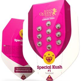 Udendørs cannabisfrø Special Kush 1 Royal Queen Seeds
