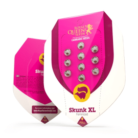 Skunk XL skunkfrø Royal Queen Seeds cannabisfrø