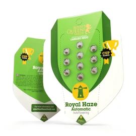 Skunkfrø Royal Haze Automatic Cannabisfrø Royal Queen Seeds