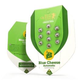Blue Cheese Automatic Royal Queen Cannabisfrø Skunkfrø