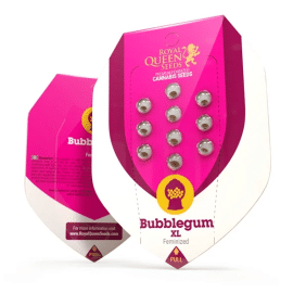 Bubblegum XL Royal Queen Cannabisfrø Skunkfrø