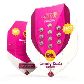 Candy Kush Express (Hurtigt Blomstrende) Royal Queen Cannabisfrø Skunkfrø