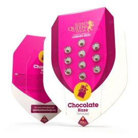 Chocolate Haze Royal Queen Cannabisfrø Skunkfrø