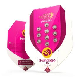 Somango XL Royal Queen Cannabisfrø Skunkfrø